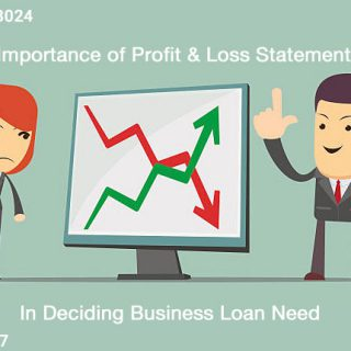 profit and loss statement significance in business loan